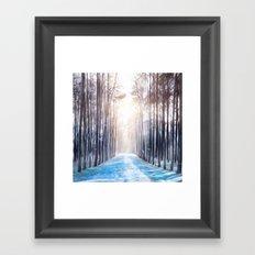 Feather Dance In Winter Framed Art Print