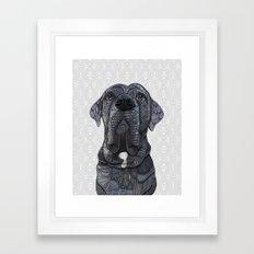 Chief the Mastiff Framed Art Print