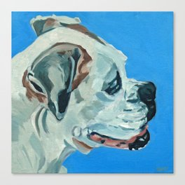 Holly the White Boxer Dog Canvas Print