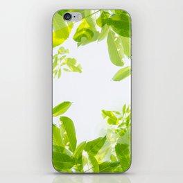 Walnut tree leaves pattern iPhone Skin
