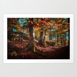 sunrise in the forest morning walk Art Print