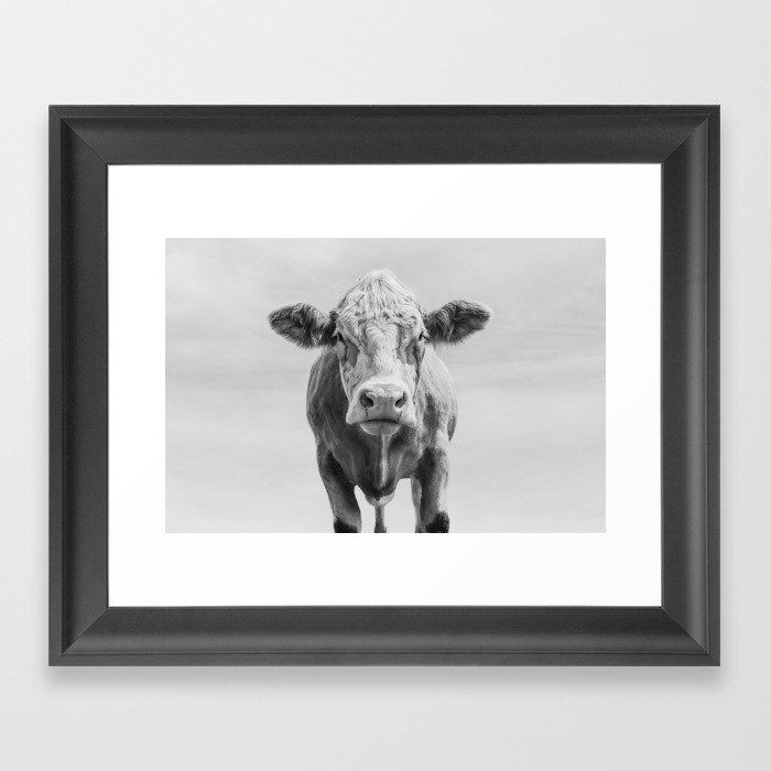 Animal photography cow portrait minimalism farm animals black and white framed art print