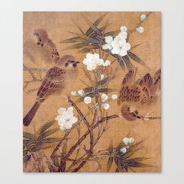 Sparrows, plum blossoms, and bamboo Canvas Print