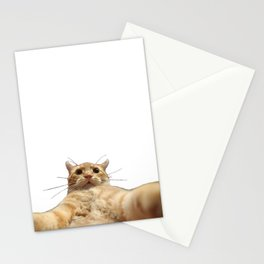 Cat Selfie Stationery Cards