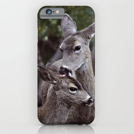 A Tender Moment iPhone Case