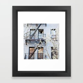 Brooklyn Spring Framed Art Print