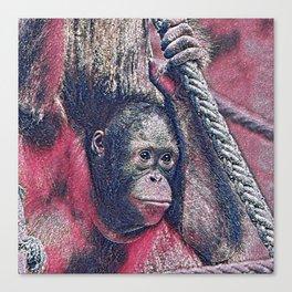 GlitzyAnimal_OrangUtan_002_by_JAMColors Canvas Print