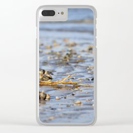 Shells in the sand 3 Clear iPhone Case