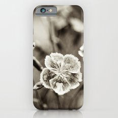 Where Wild Bee Wings Fly iPhone 6s Slim Case