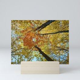 Fall Forest Mini Art Print