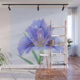 Iris flower Wall Mural