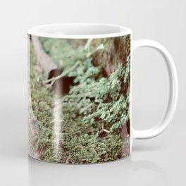 Where the Green Fern Grows Coffee Mug