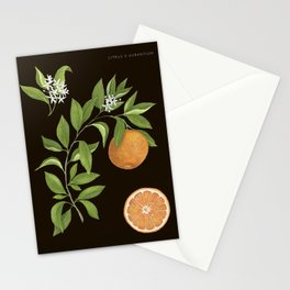 Seville Orange Stationery Cards
