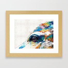 Colorful Horse Art - A Gentle Sol - Sharon Cummings Framed Art Print