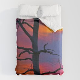 Dead Tree Against Colorful Sky Comforters
