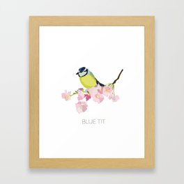 Blue Tit Art Print Framed Art Print