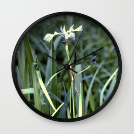 Blue flag iris Wall Clock