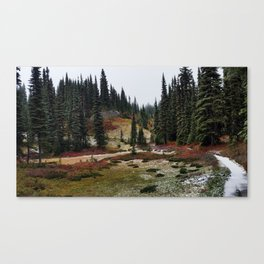 Light Snow on Mountain Meadow Canvas Print