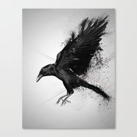 crow Canvas Prints featuring Crow by Adam Flynn