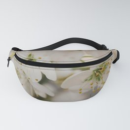 Plum Blossoms Fanny Pack