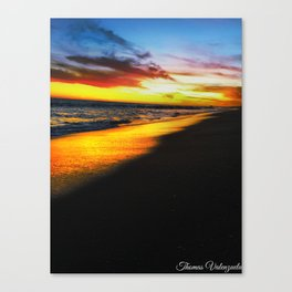 Golden Coast  Canvas Print
