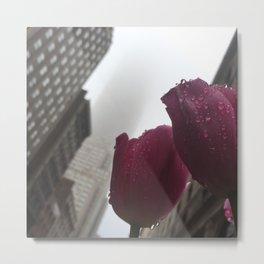 Empire Tulip Metal Print