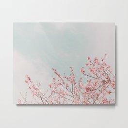 Pink Flowers in the Sky Metal Print