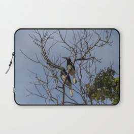 A couple of oriental pied hornbills Laptop Sleeve