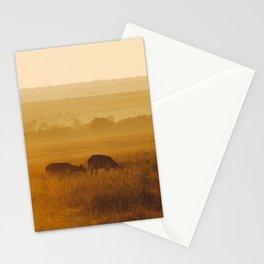 Safari Sun Stationery Cards