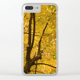 Under the trees - Autumn Clear iPhone Case