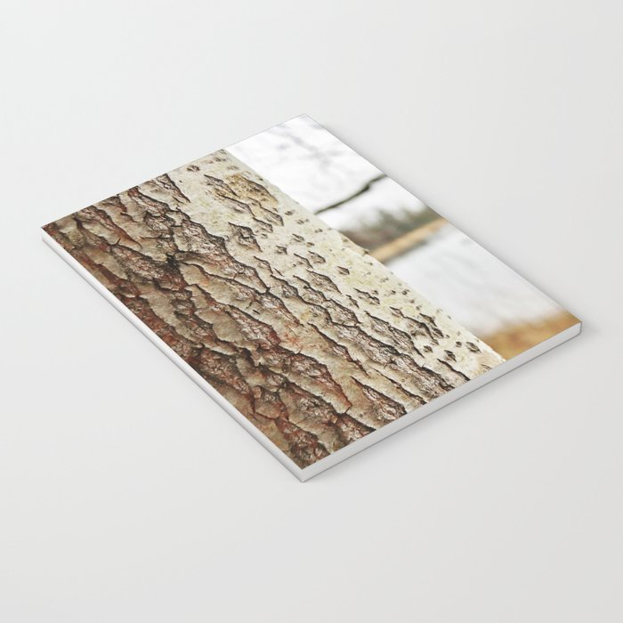 Aspen bark and gray lake Notebook