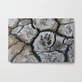 Paw Print at Stiffkey Salt Marsh Metal Print