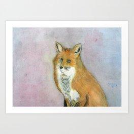Frustrated Fox Art Print