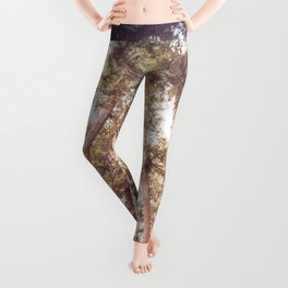 Forest Sky Leggings