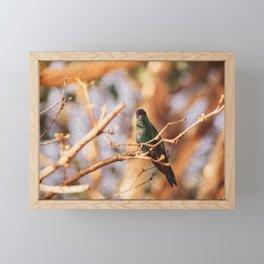 Bird - Photography Paper Effect 003 Framed Mini Art Print