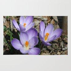 Garden Flowers Rug