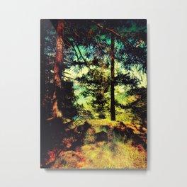 Magic Place, Stoney Hill, Vancouver Island Metal Print