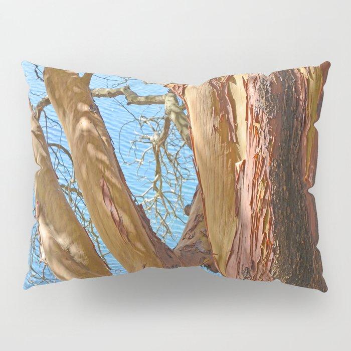 MADRONA TREE BY THE SEA Pillow Sham