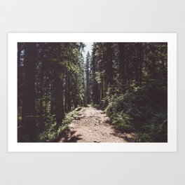 Entering the Wilderness - Landscape and Nature Photography Art Print