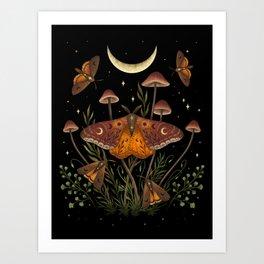 Autumn Light Underwing Art Print