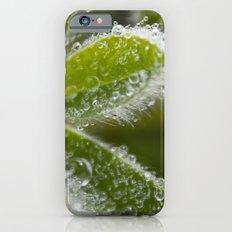 Morning Dew I Slim Case iPhone 6s