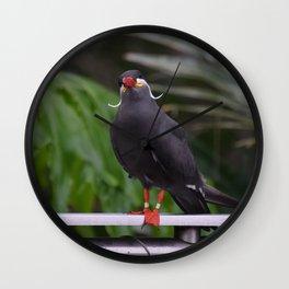National Aviary - Pittsburgh - Inca Tern 2 Wall Clock