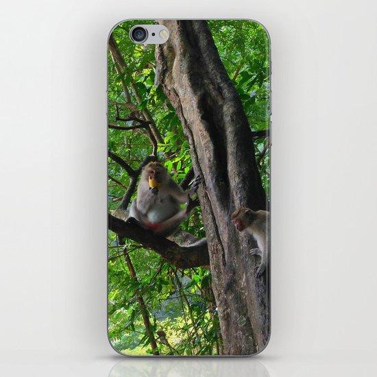 Mountain Monkeys iPhone & iPod Skin