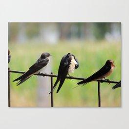 Company of Three Canvas Print