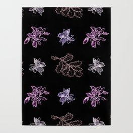 Quercus (black, purple) Poster