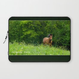 Horse in a pature Laptop Sleeve