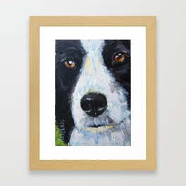 "Intensity, Thy Name is ""Border Collie"" Framed Art Print"