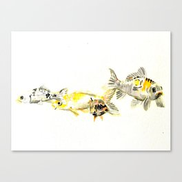 Fish out of Water Canvas Print
