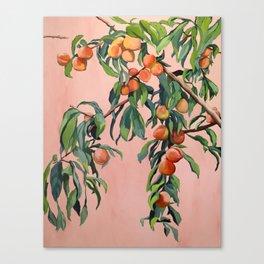 Foliage II / Peach Tree Canvas Print