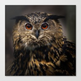 The old eagle owl Canvas Print